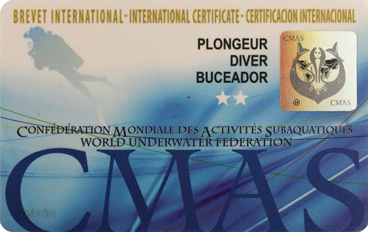 Formations Plongeur* et Plongeur** 2020